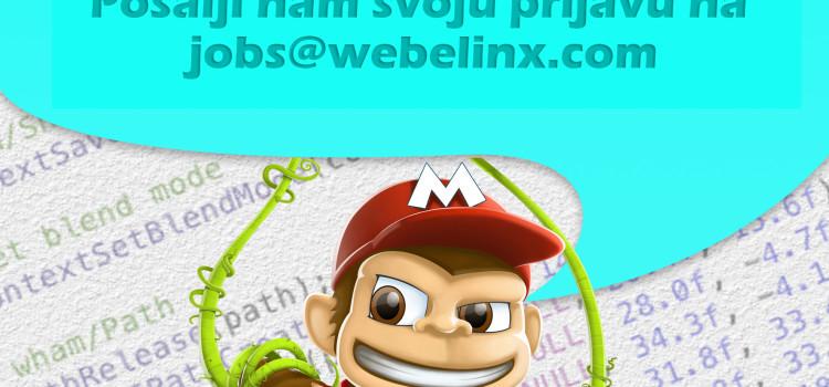WEBELINX – iOS Praksa
